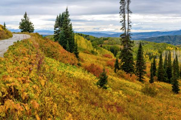 hiking in Routt National Forest